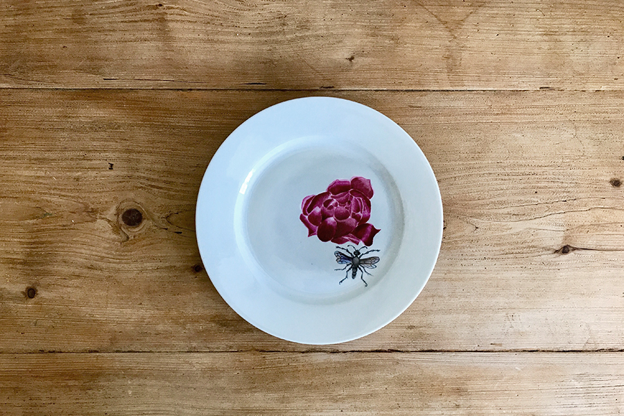 Pivoine-&-Insecte-Peinture-sur-porcelaine-Valerie-Laudier-Otsuki-Sama